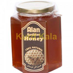 عسل طبیعی کردستان برند آلان 1کیلو