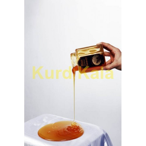 عسل طبیعی آلان کردستان 500گرم