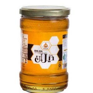 عسل طبیعی دیلان کردستان 700 گرم