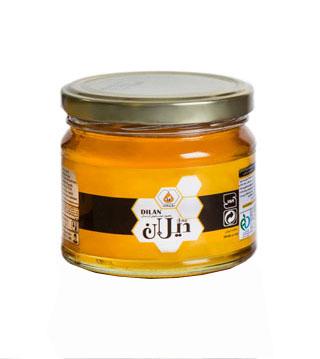 عسل طبیعی دیلان کردستان 450 گرم