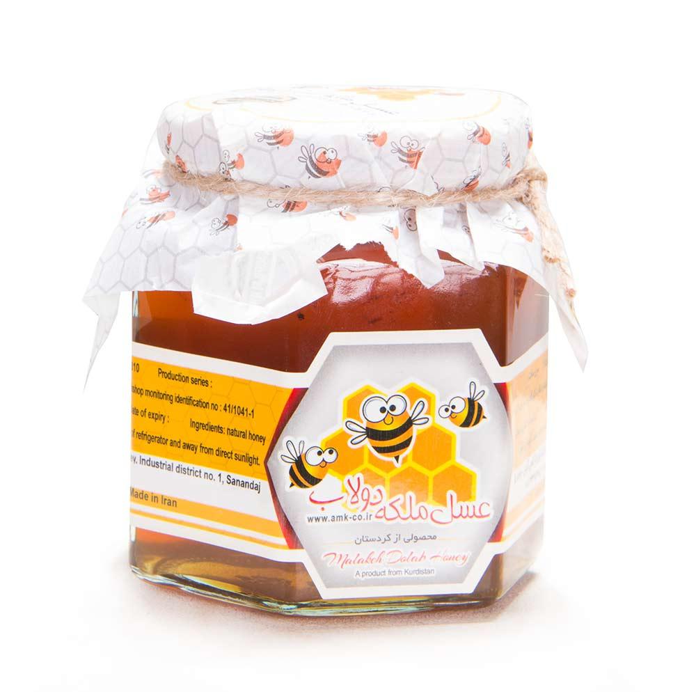 عسل طبیعی ملکه کردستان 500 گرم